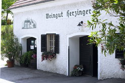 Weingut Herzinger