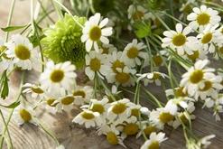 Blüten, Flair & Bindekunst Zwanzger