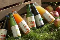 Handl Fruchtsaft