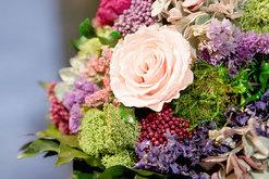Blume und Duft