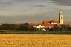 Verein MEISTERSTRASSE Niederösterreich-Mitte