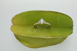Georgia Goldfish Juwelenschmiede - Designhandwerk im Herzen Wiens