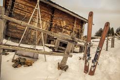 Ünique Skis